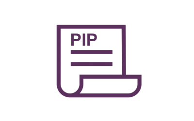 3.1. PIP Regulations and Commentary
